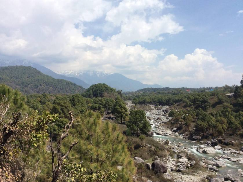 A snow fed stream from the Dhauladhar Range of the Himalayas